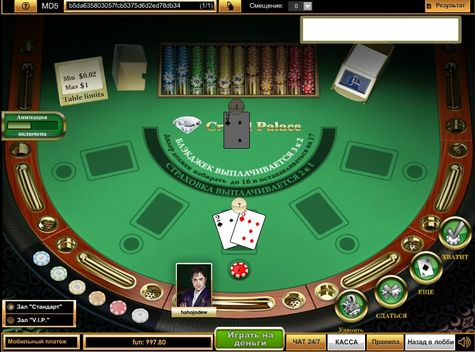 все казино питт